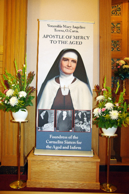 MAT3437_Jan 21 16_Apostle of Mercy banner